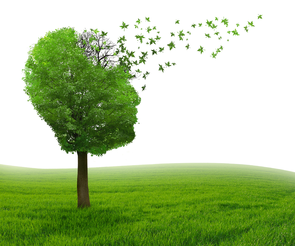 Brain disease with memory loss due to Dementia and Alzheimers illness as medical icon of a tree shaped as human head and brain losing leaves as concept of intelligence decline.