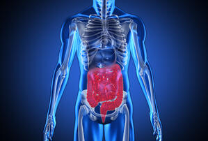 Digital blue human with highlighted digestive system on blue background