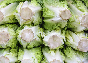Raw vegetable pattern Sliced heads of romaine lettuce (binomial name Lactuca sativa L. var. longifolia) on display at a farmers market
