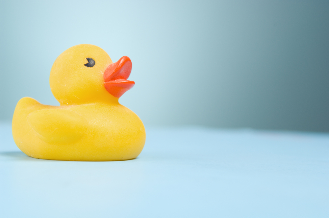 Rubber ducky on light blue.