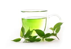 Green Tea and Your Gut