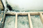 toxic mold - This Photo by Unknown Author is licensed under CC BY-ND