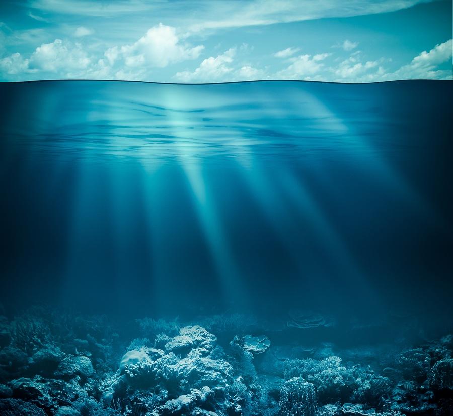 Deep Sea Allergies